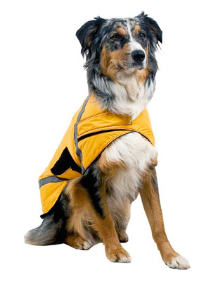 High visibility coat for dogs